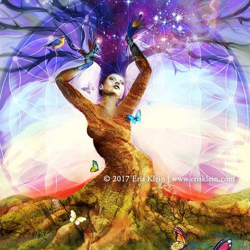 Tree of Life | Print