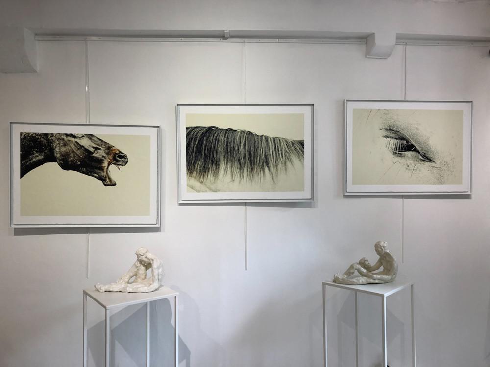 Les trois Tirages Uniques Exposées à la Galerie Passion d'Art  N° #32 #1 et #31