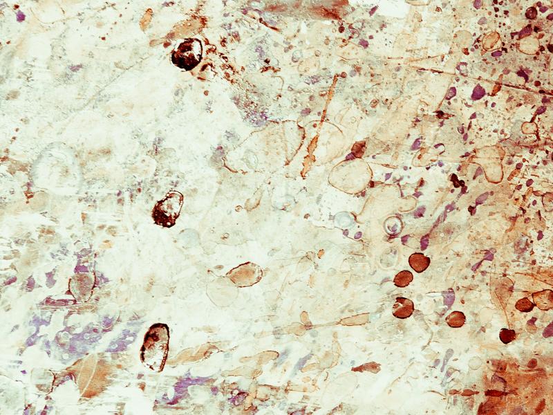 Ivresse des particules-1