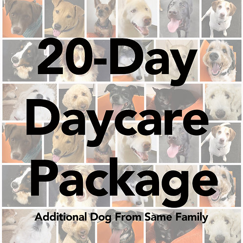 20-Day Daycare Package (Additional Dog from Same Family)