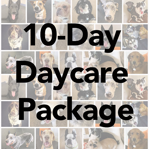 10-Day Full Day Daycare Package