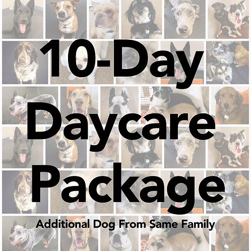 10-Day Daycare Package (Additional Dog from Same Family)