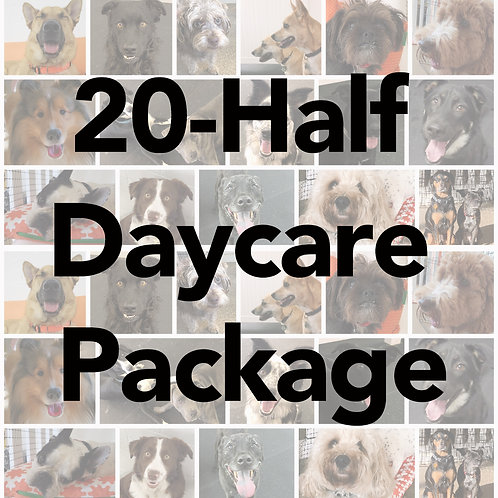 20-Day Half-Day Daycare Package