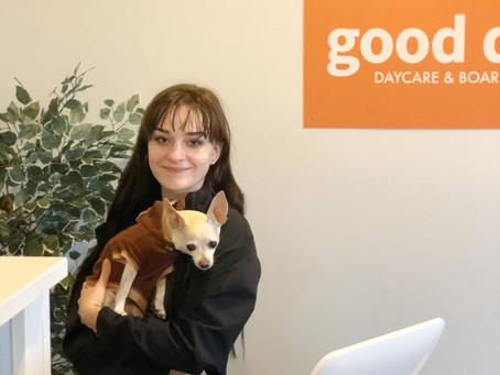MEET OUR STAFF: SOPHIE