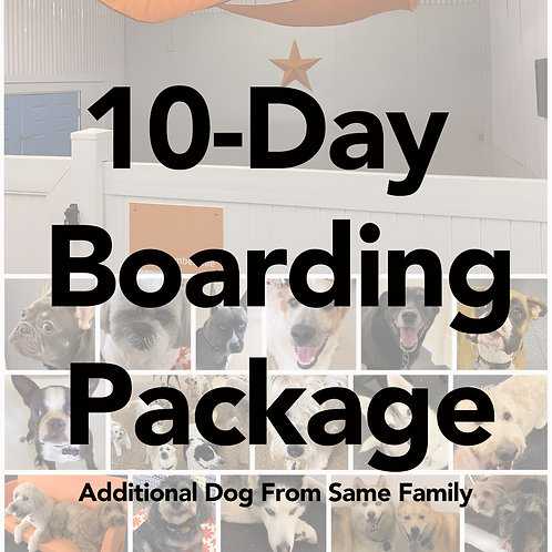 10-Day Boarding Package (Additional Dog from Same Family)