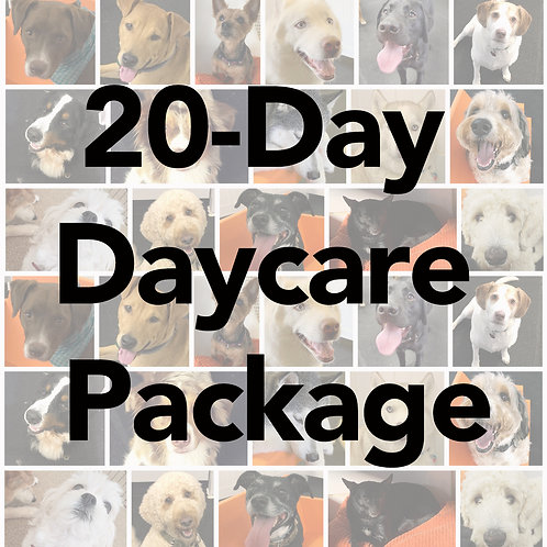 20-Day Full Day Daycare Package