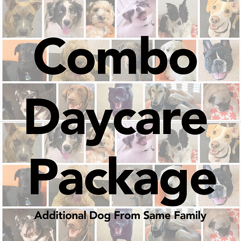 Half & Full Daycare Combo Package (Additional Dog from same family)