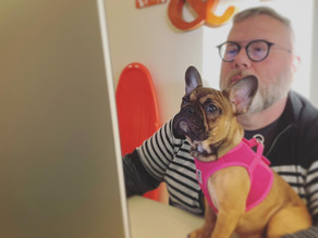 WILL YOUR DOG BE WELCOME AT YOUR OFFICE?