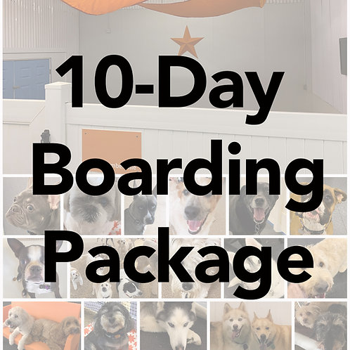 10-Day Boarding Package