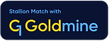 G1Goldmine-SM-Logo-RGB-Navy.png