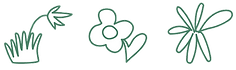 Pome-Flowers-3illos.png