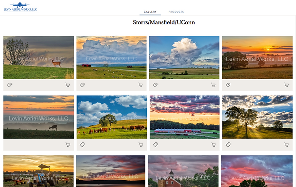 purchase prints online