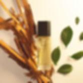 canela y hojas 4.jpg