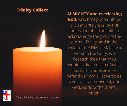 Trinity Collect - ACA .png