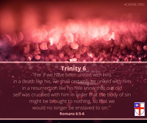 Trinity 6 Epistle ACA .png