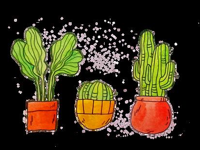 plantas_edited.png