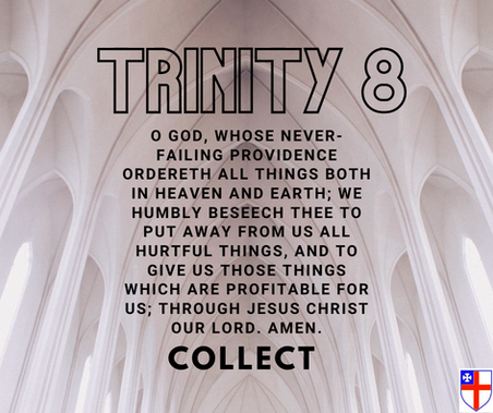 Collect Trinity 8 ACA.png
