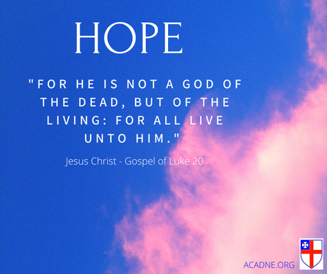 Hope Luke 20 .png