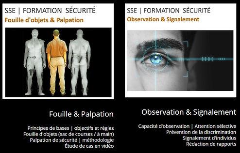 Fouille Palpation Observation Signalemen