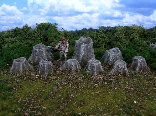 Large Tree Stumps