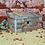 Thumbnail: The Backhouse