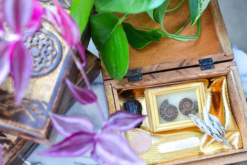 Dream Catcher Box - Pure Heart Crystal Kit