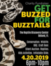 buzztail_transparent (1).png