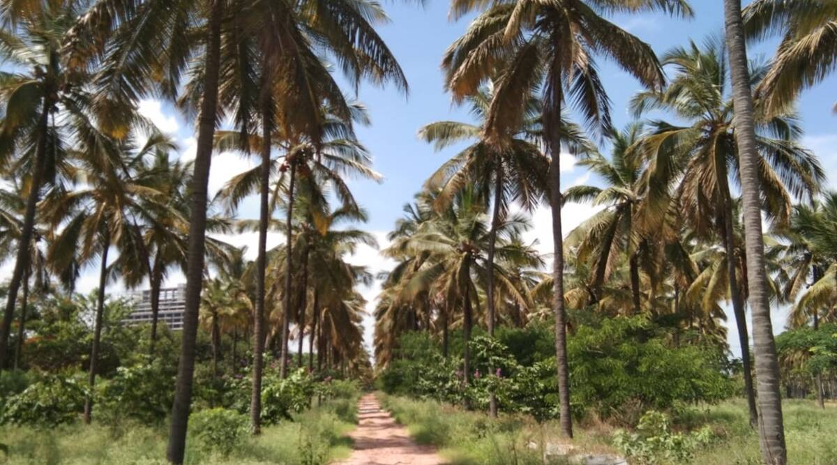 Bangalore gets its first eco-park