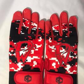 d west gloves.jpg