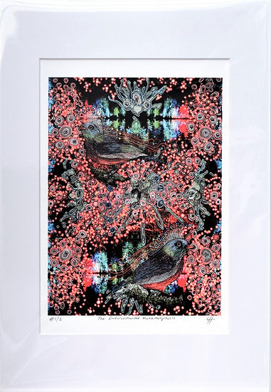 Environmental Metamorphosis (Print)