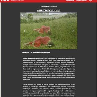 Revista RED, revista de ensaios digitais