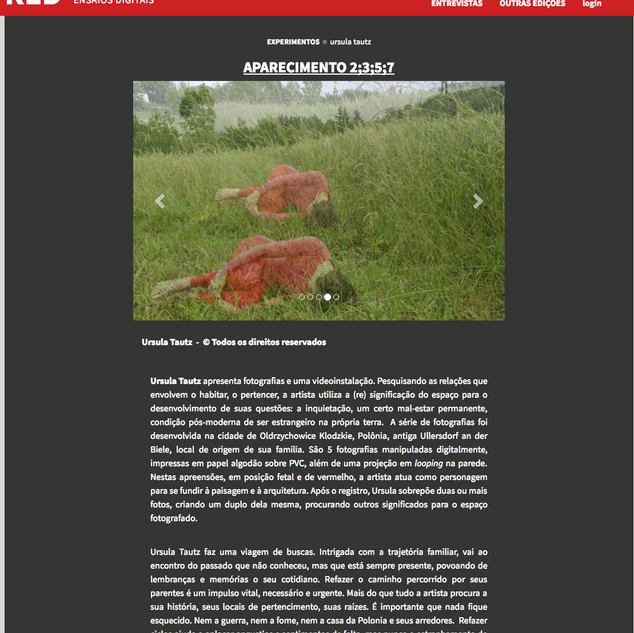 Revista RED, revista de ensaios digitais