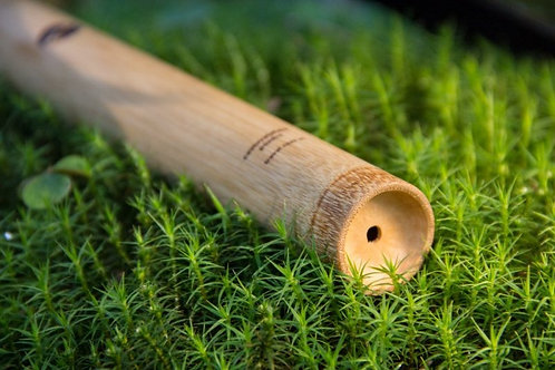 Bambusové pouzdro na zubní kartáček