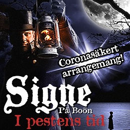 Signe på Boön  - I Pestens tid