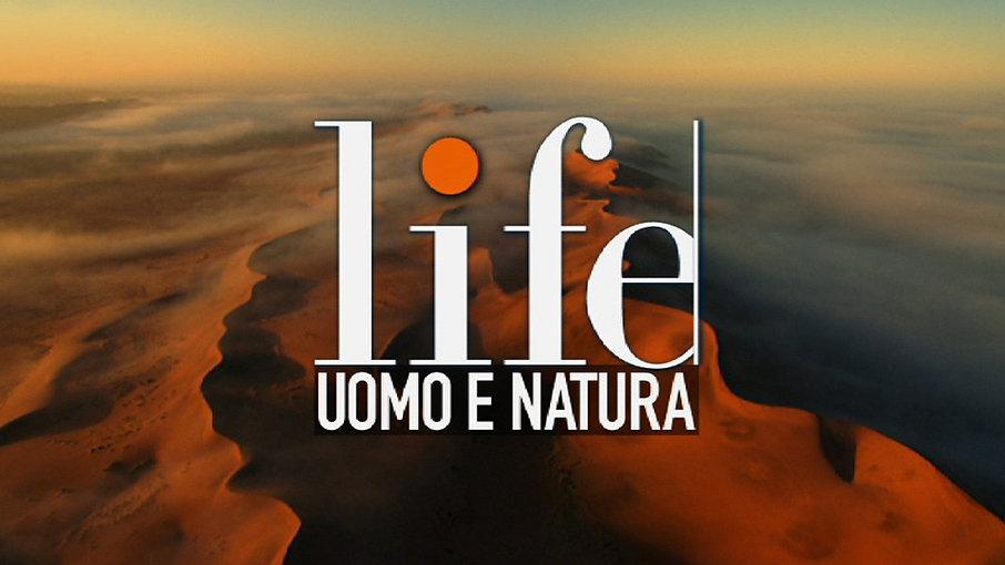 promo-LIFE.jpg