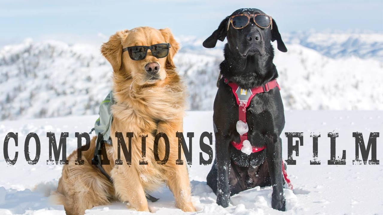 Companions Film