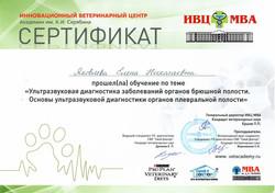 Яковлева Сертификат