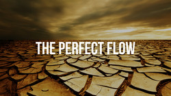 The Perfect Flow