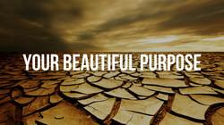 The Beautiful Purpose