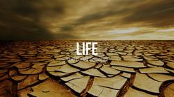 Life - The Great Teacher