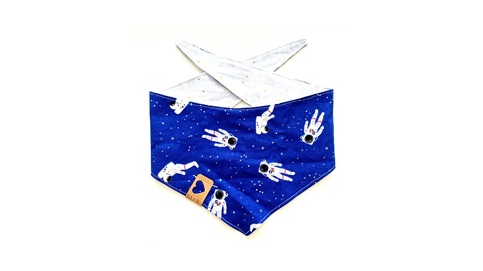 Astronautenausflug