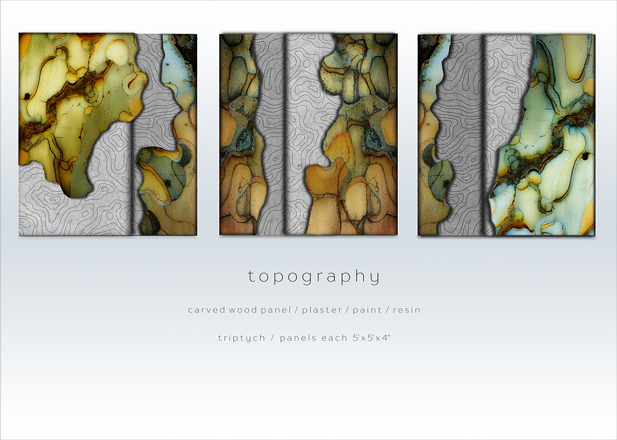 TOPOGRAPHY SERIES 4.jpg