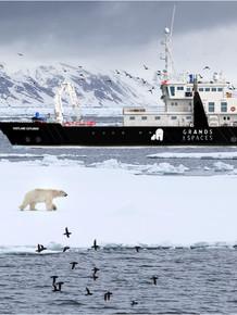 Svalbard Experditions - Vestland Explorer 1.jpg