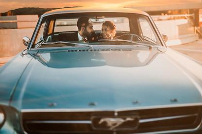 Mustang lovers.jpg