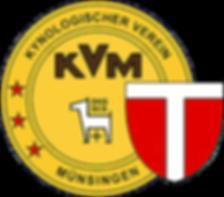 KVM-Logo_farbig.png