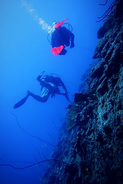 PADI Divemaster Fan Canyon Tioman Island Malaysia