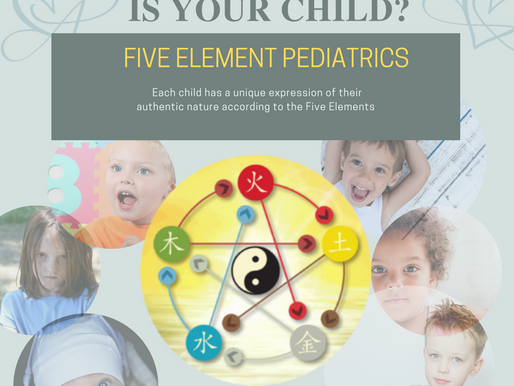 Five Element Pediatrics: How understanding a child's element can help you help them.