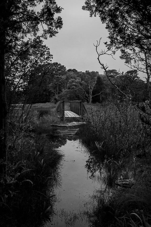 Bridge in Water