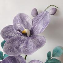 Orchidée Vanda - Fleurs en sucre