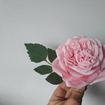 Juliette Rose - Fleur en gumpaste